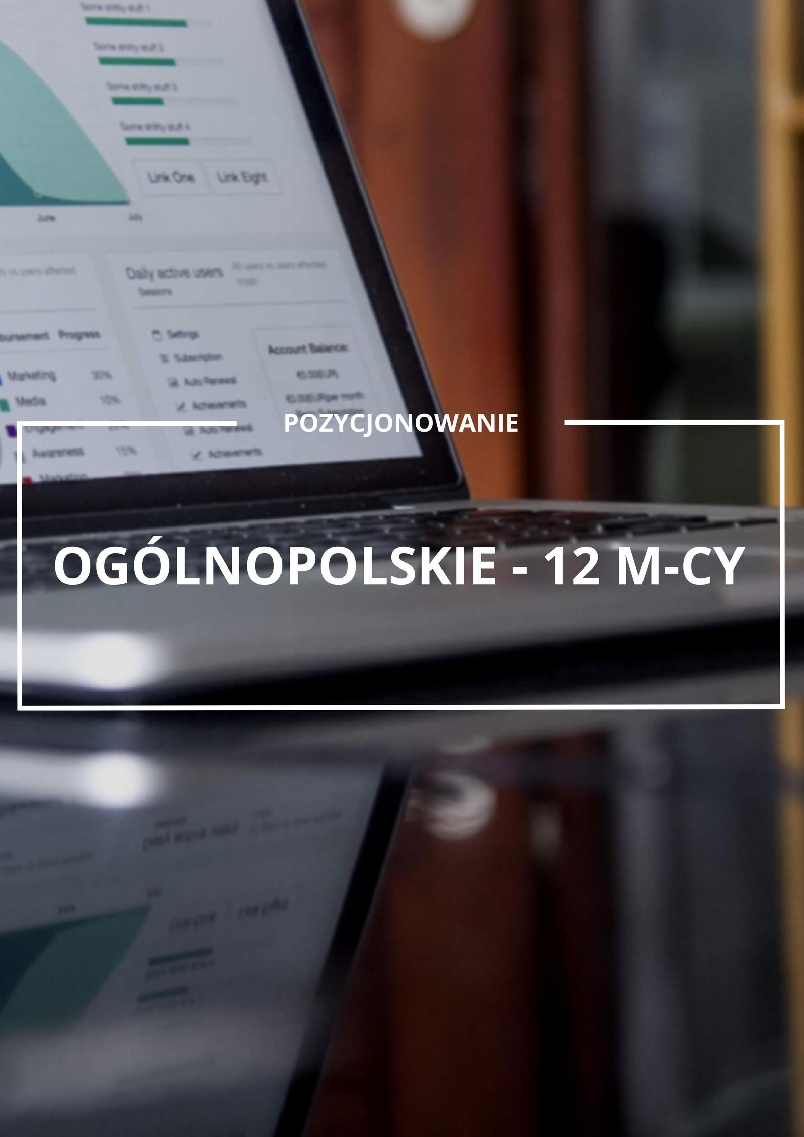 Pozycjonowanie ogólnopolskie 12 m-cy